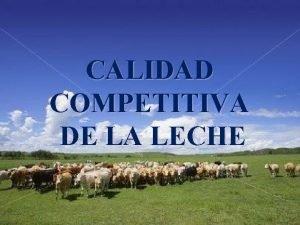 CALIDAD COMPETITIVA DE LA LECHE ESLABONES DE LA