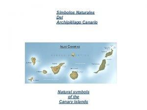 Smbolos Naturales Del Archipilago Canario Natural symbols of