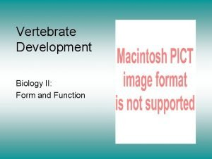 Vertebrate Development Biology II Form and Function The