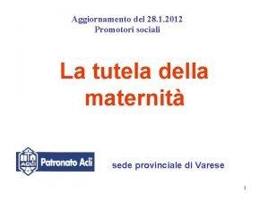 Aggiornamento del 28 1 2012 Promotori sociali La