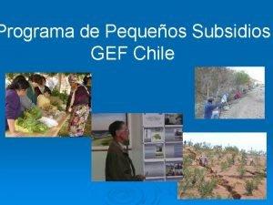 Programa de Pequeos Subsidios GEF Chile Estrategia del