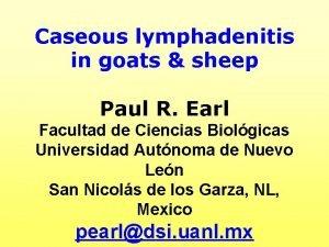 Caseous lymphadenitis in goats sheep Paul R Earl