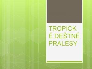TROPICK DETN PRALESY kola Z Masarykova Masarykova 291
