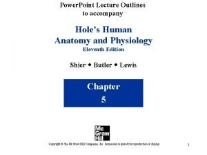 Power Point Lecture Outlines to accompany Holes Human