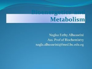 Bioenergetics and Metabolism Naglaa Fathy Alhusseini Ass Prof