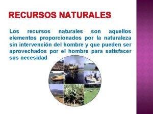 RECURSOS NATURALES Los recursos naturales son aquellos elementos