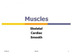 Muscles Skeletal Cardiac Smooth 09 Mar21 Muscles 1