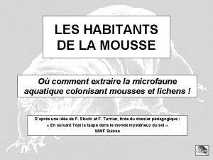 LES HABITANTS DE LA MOUSSE O comment extraire