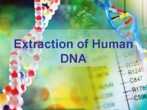 Extraction of Human DNA Experiment Goals Isolation of