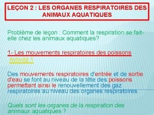 LEON 2 LES ORGANES RESPIRATOIRES DES ANIMAUX AQUATIQUES
