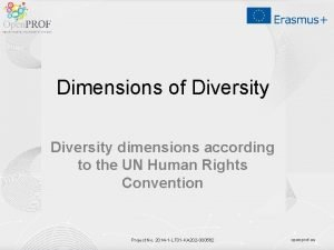 Dimensions of Diversity dimensions according to the UN