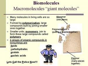 Biomolecules Macromolecules giant molecules n Many molecules in