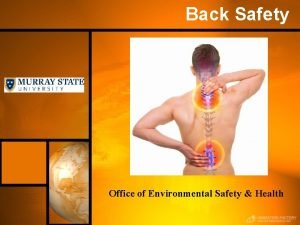 Back Safety Office of Environmental Safety Health Back