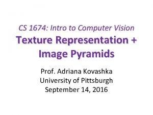 CS 1674 Intro to Computer Vision Texture Representation