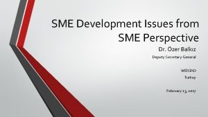 SME Development Issues from SME Perspective Dr zer