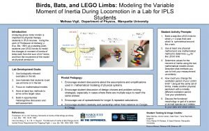 Birds Bats and LEGO Limbs Modeling the Variable