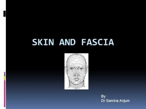 SKIN AND FASCIA By Dr Samina Anjum INTRODUCTION