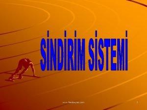 www fendosyasi com 1 SNDRM SSTEM YUTAK YEMEK