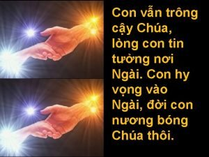 Con vn trng cy Cha lng con tin
