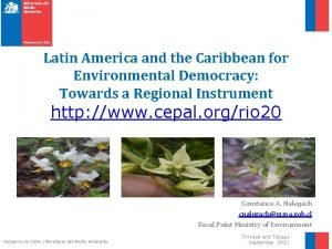 Latin America and the Caribbean for Environmental Democracy