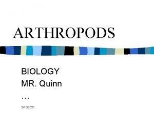 ARTHROPODS BIOLOGY MR Quinn 3102021 Animals of Phylum