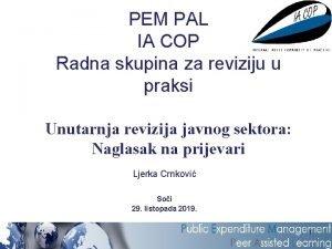 PEM PAL IA COP Radna skupina za reviziju