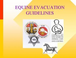 EQUINE EVACUATION GUIDELINES 2003 Cedar Paradise Otay Firestorm