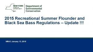 1 2015 Recreational Summer Flounder and Black Sea