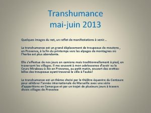 Transhumance maijuin 2013 Quelques images du net un