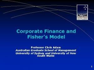 Corporate Finance and Fishers Model Professor Chris Adam
