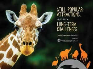 More Affordable TravelMore Visits With zoos and aquariums
