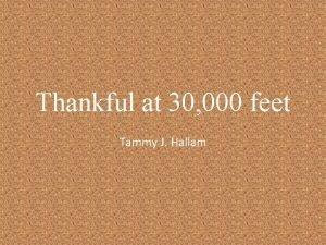 Thankful at 30 000 feet Tammy J Hallam