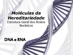 Molculas da Hereditariedade Estrutura Geral dos cidos Nucleicos