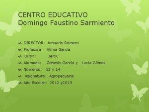 CENTRO EDUCATIVO Domingo Faustino Sarmiento DIRECTOR Amauris Romero