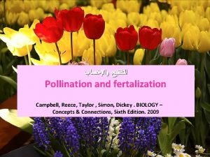 Pollination and fertalization Campbell Reece Taylor Simon Dickey