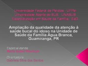 Universidade Federal de Pelotas UFPel Universidade Aberta do