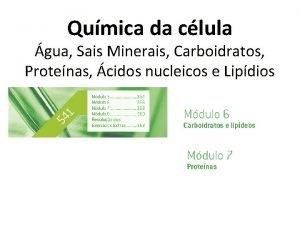 Qumica da clula gua Sais Minerais Carboidratos Protenas