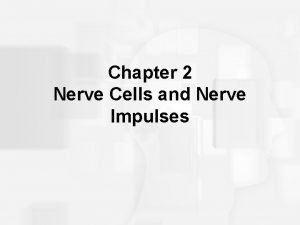 Chapter 2 Nerve Cells and Nerve Impulses Neurons