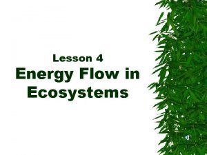 Lesson 4 Energy Flow in Ecosystems Energy All