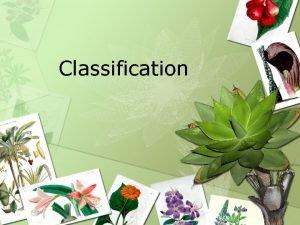 Classification What is Classification Classification is the arrangement