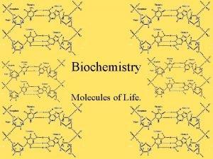 Biochemistry Molecules of Life Organic Chemistry Organic Compounds