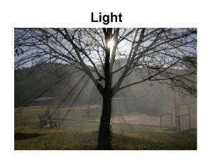 Light Facts About Light Light travels in straight