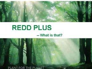 REDD PLUS What is that 1 REDD PLUS