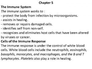 Chapter 5 The Immune System The immune system