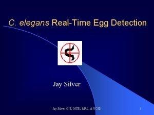 C elegans RealTime Egg Detection Jay Silver GIT
