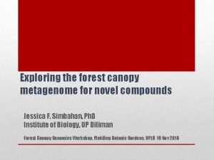 Exploring the forest canopy metagenome for novel compounds