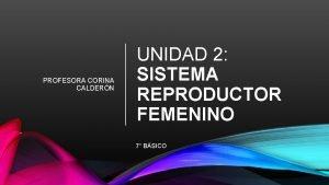 PROFESORA CORINA CALDERN UNIDAD 2 SISTEMA REPRODUCTOR FEMENINO