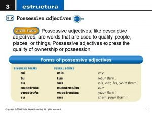 Possessive adjectives like descriptive adjectives are words that