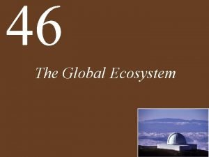 46 The Global Ecosystem Chapter 46 The Global