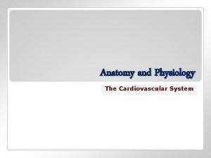 Anatomy and Physiology The Cardiovascular System The cardiovascular